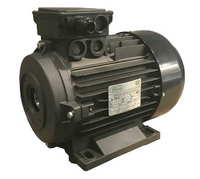 Электродвигатель RAVEL 4,4 кВт полый вал